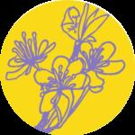 Montessori – projektová dílna